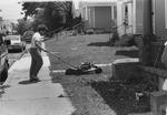 Lawn mowing scene