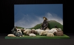 Counting Sheep by Franziska Torti-Roten