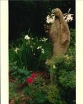 Garden Paradise of Our Lady, circa 1982