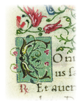 Letters from Rare Books: C by University of Dayton. Marian Library