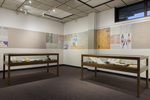Exhibit Display Cases