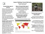 Research exercise: Human Trafficking: An Explanation of Forced Child Labor.