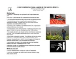 Research exercise: Human Trafficking: Forced Agricultural Labor in the US