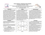 Performance and Assessment of Accuracy in a Visual Sustained Attention Task