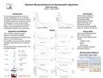 Optimum Microarchitectures for Neuromorphic Algorithms