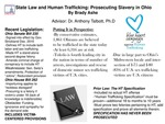 Research exercise: Ohio Laws to Combat Human Trafficking: Somewhat Flawed Despite Significant Strides Made
