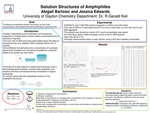 Research exercise: Solution Structures of Amphiphiles