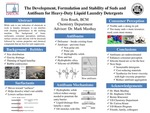 The Development, Formulation and Stability of Suds and Antifoam for Heavy Duty Liquid Laundry Detergents