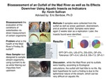 Research exercise: Bioassessment of Outfall Water of the Mad River as well as Its Effects Downriver Using Aquatic Insects As Indicators