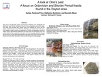 A Look at Ohio's Past: A Focus on Ordovician and Silurian Period Fossils Found in the Dayton Area by Ashley Pantona Price, Katherine Burkman, and Danielle Moon