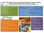 Research exercise: Dimensions of Support in Schools