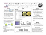 Examination of Host Range of Pseudomonas aeruginosa phages UT1, SN-T, and PEV@ for Treatment of Bacterial Biofilms in Fuels