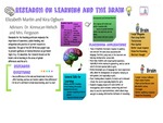 Research exercise: Research on Learning and the Brain