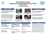 Research exercise: United Nations Reform: Inefficiencies of the Responsibility to Protect