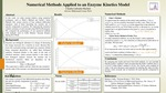 Research exercise: Numerical Methods applied to an Enzyme Kinetics Model