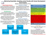 Mentoring Essentials: Assisting Junior Faculty with Career Development