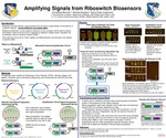 Research exercise: Amplifying Signals via Riboswitch Biosensors by Annastacia C. Bennett