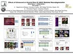 Effects of Ultrasound on Amyloid Beta 42 (Aβ42) Mediated Neurodegeneration