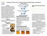 Comparison of citric acid vs. ascorbic acid functionalized magnetic nanoparticles