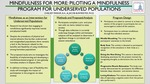 Mindfulness for More: Piloting a Mindfulness Program for Underserved Populations