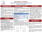 Perceptions of Violence