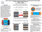 Study of Lithium Intercalation towards the Development of an Electrochemical Kinetic Model for Lithium/Copper Phthalocyanine Cell