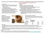 The Persistence of Neotenous Behaviors in Felis catus