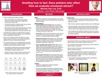 Smelling How to Feel: The Impact of Odor on Affective Evaluation and Mood
