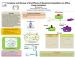 Analysis and Review of the Effects of Bacterial Competition on Efflux Pump Inhibition