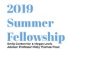 Graphic Design Summer Fellowship 2019