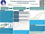 Combating Antibiotic Resistance Using Plant-Derived Compounds