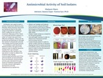 Antimicrobial Activity of Soil Isolates