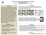 Antimicrobial Compounds Extracted from Soil Isolates