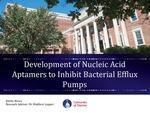Development of Nucleic Acid Aptamers to Inhibit Bacterial Efflux Pumps