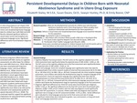 Persistent Developmental Delays in Children Born with Neonatal Abstinence Syndrome and In Utero Drug Exposure