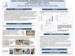 Analysis of Salt Deposition and Deliquescence in Environmental Test Chambers