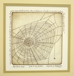 Spiders Web by Joan Bohlig
