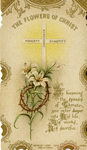 Flowers of Christ profession holy card
