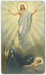 Jesus rises above Sorrowful Mother