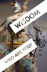 Postcard: 'Wisdom' by University of Dayton